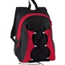 Ash City Polyester Backpack